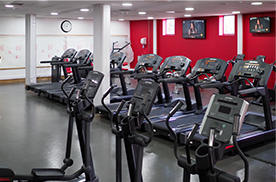 Cardiovascular Equipment in Gym