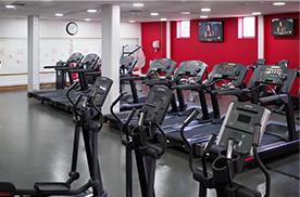 Cardiovascular Equipment in Gym